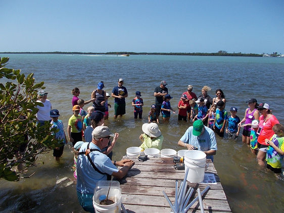 Seagrass Adventure Wading Trips
