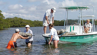 CHNEP volunteers building artificial oyster reefs