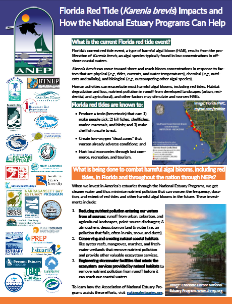 Red Tide Fact Sheet