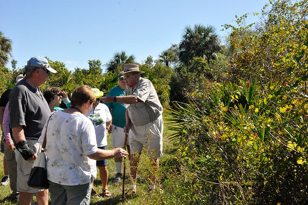 Participants learning about plants