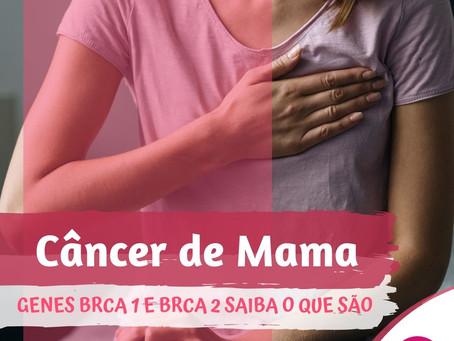 Câncer de Mama - GENES BRCA 1 E BRCA 2 SAIBA O QUE SÃO.