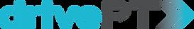 DrivePT_logo_LogoColour (1).png