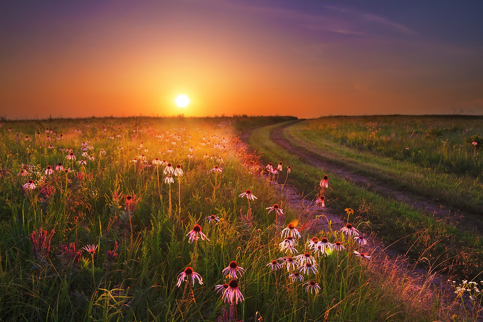 Sunset on the Wah'Kon-Tah Prairie in Mis