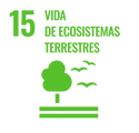 S_SDG_Icons_Inverted_Transparent_WEB-15