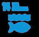 S_SDG_Icons_Inverted_Transparent_WEB-14