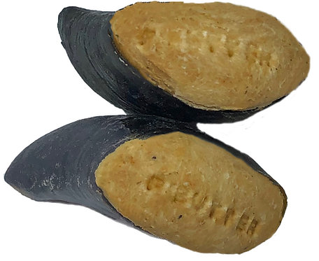 Cow Hooves – Baked with Premium Human Grade Ingredients (sizes vary) Australian
