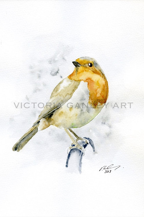 'Garden Robin' Watercolour Robin