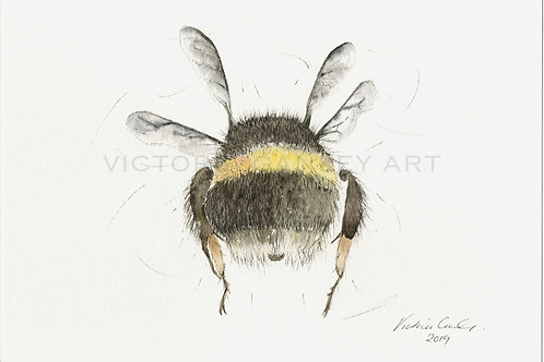 'Dont Worry' Watercolour Bee Print