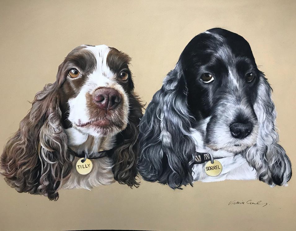Tilly & Sorrel
