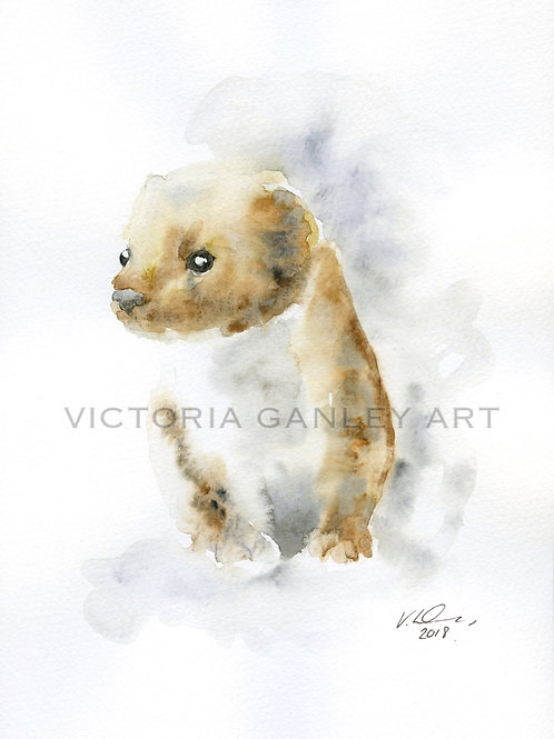 'Willow' Watercolour Weasel