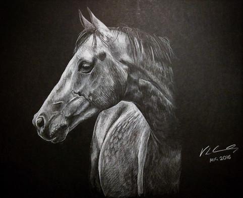 White on Black Horse