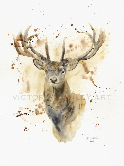 'Presence' Watercolour Stag Print