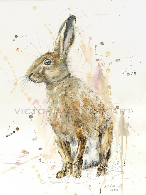 'The Original Watercolour Hare' Watercolour Hare Print