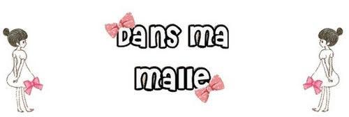 """Le joli blog """"Dans ma malle"""""""