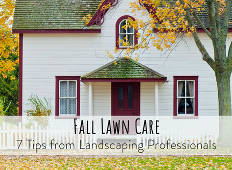 Fall Lawn Care – 7 Tips from Landscaping Professionals