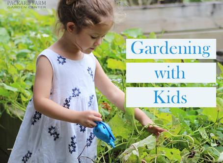 Gardening with Kids: How to Get Your Little Ones in the Garden