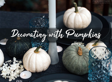 Decorating with Pumpkins: 9 Unique Ideas Besides Jack-O-Lanterns