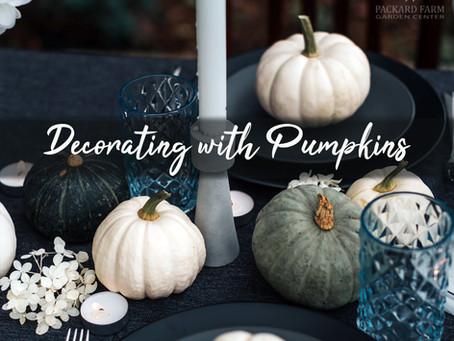 Decorating with Pumpkins: 9 Unique Ideas Besides Jack-O-Lanterns