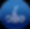 ollie blue-gradient_edited.png