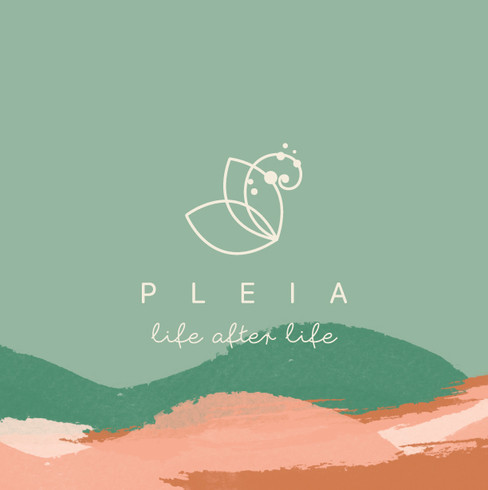 PLEIA-Manual-de-Marca2.jpg