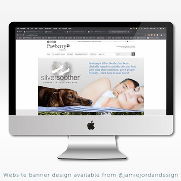 Silver Soother Website Banner Design