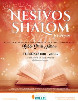 MK flyers Nesivos Shalom alt rv3