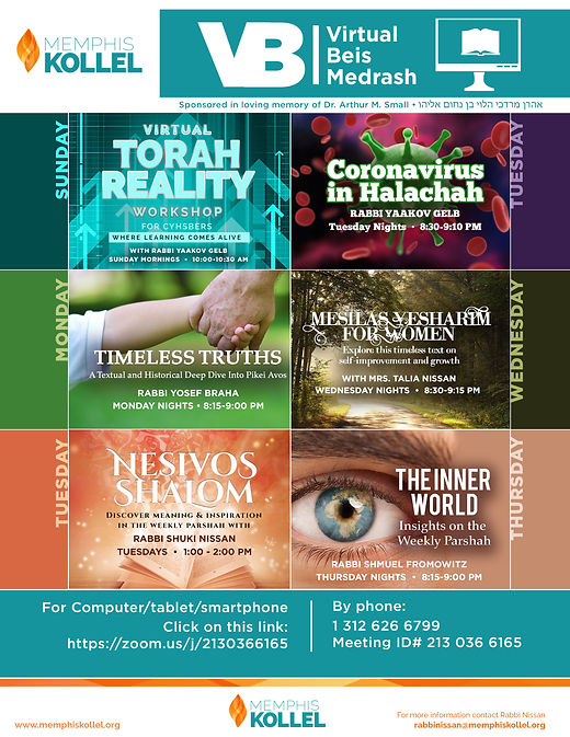 virtual beis medrash flyer.jpg