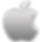 Apple-logo-icon-Aluminum.png