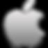 Apple-logo-icon-Aluminum.png