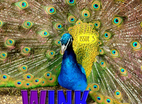WINK issue 3 is ready for consumption.
