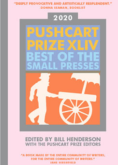 Our 2019/2020 Pushcart Prize Nominations