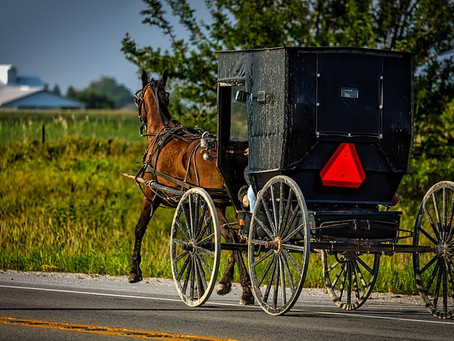 Dish Washers and Wood Choppers—or How an Amish Baby Got His Name