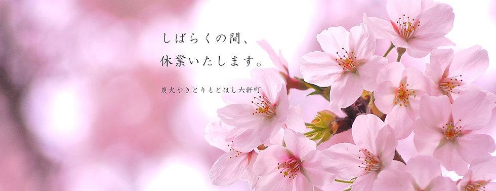 slider_corona_5.jpg