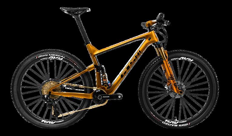 Bicicleta GTS Gold Rav 29