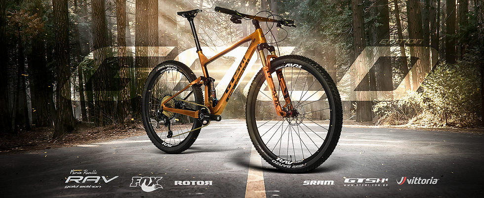 Bicicleta GTS Rav Gold Edition.png