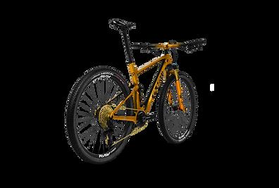 Bicicleta GTS Rav Gold Edition Traseira