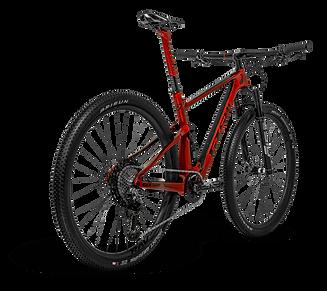 red-rav-bike-traseira.png