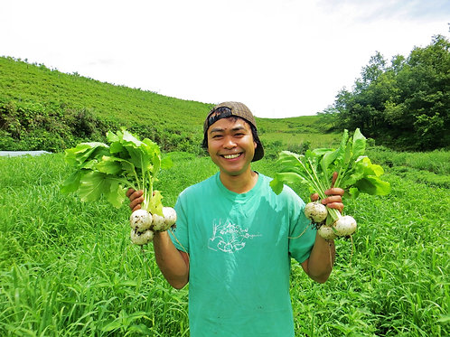 有機にんじん収穫体験と持続可能な農業の話