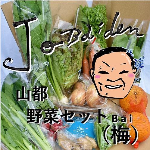 Jo Baiden 山都野菜セット 梅(バイ)