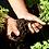 Thumbnail: 有機にんじん収穫体験と持続可能な農業の話