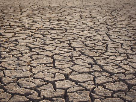 Madagascar: nuovi aggiornamenti sulla grave siccità nel sud del Paese