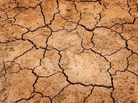 Sanità e acqua: un connubio indissolubile