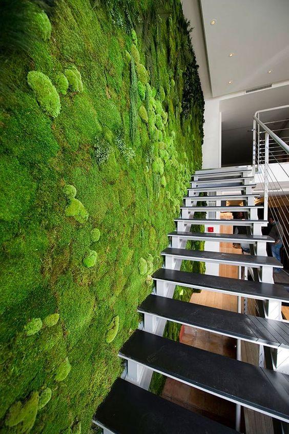 Parede verde de musgo na escada.