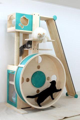 Playground para gatos.