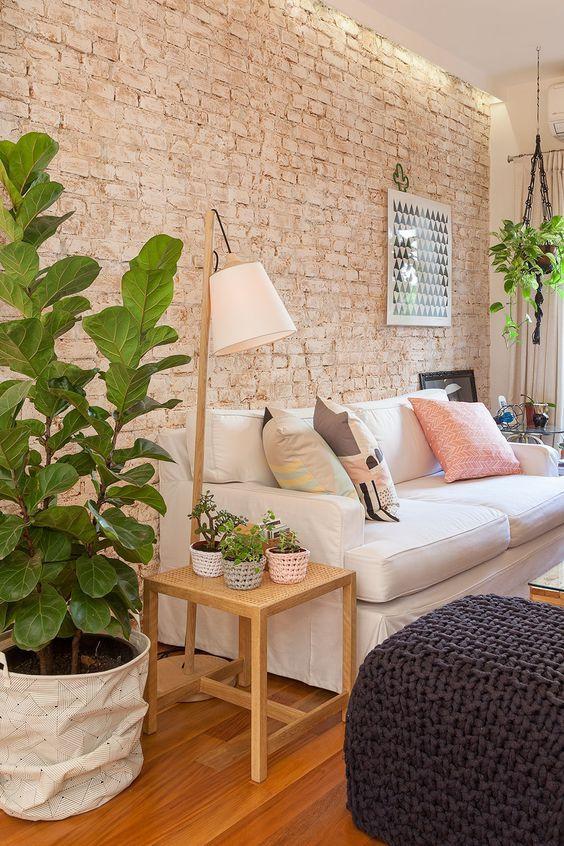 Sala com plantas em vasos. Foto: Casa de Valentina.