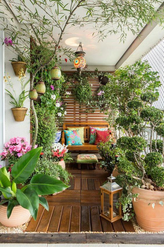 Muitas plantas na varanda.