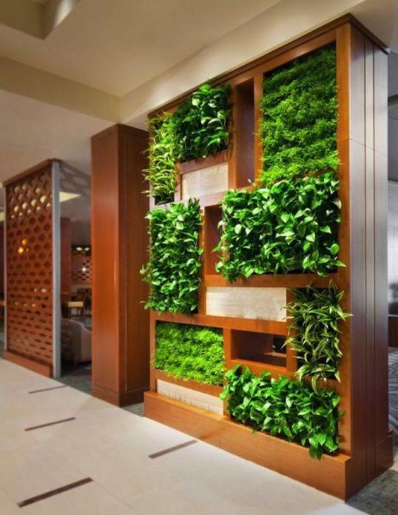 Armário com plantas.