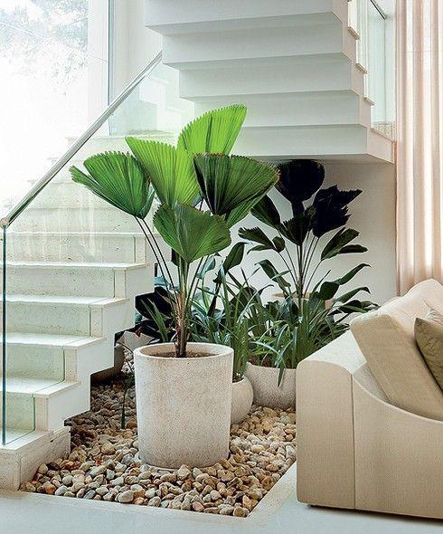 Jardim de inverno abaixo da escada. Projeto: Gil Fialho.