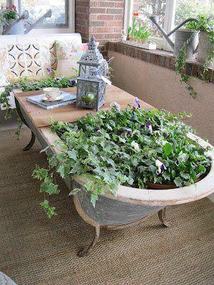 Banheira/mesa com plantas.