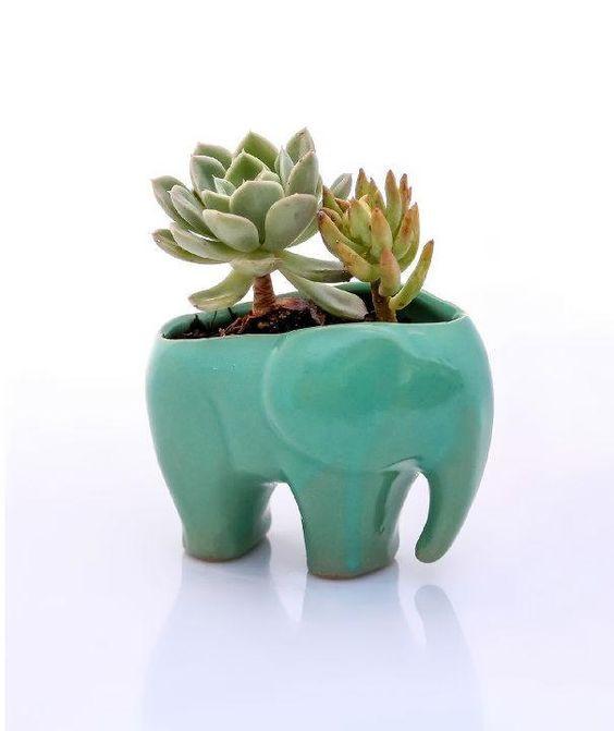 Vasinho elefante.
